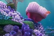 Underwater Wonders / by Tracy Elliott