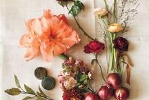 Wedding Flowers / by Tori Kenny