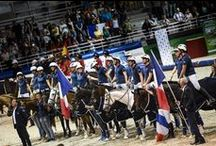Horse Ball / Horse Ball  / by Alltech FEI World Equestrian Games™ 2014 in Normandy.