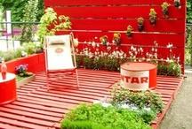 Decorating & Gardening / by sandy whiteley