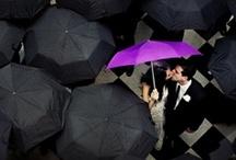 Wedding <3 / by Ashley DeFelice