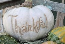 Fall and Thanksgiving Ideas / by Susan Deedrick