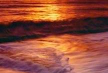 Beach love / by Mary H.