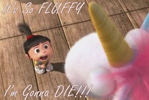 It's so fluffy, I'm gonna DIE!!! / by Christine Rinehart