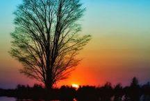 Mother Nature!!!! / by cristiana Burdie de Polanco