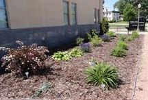 Horticulture / by Dodge County UW-Extension