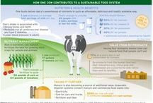 Agriculture - Youth Dairy & Livestock / by Dodge County UW-Extension