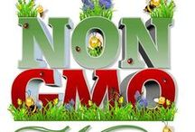 NON-GMO / by Chasing Nature