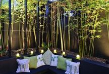 Patio Ideas / by Amber Jacobs