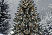 Merry Christmas / by Scrapmom
