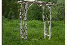 Arbor / by Kara Reaser