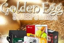 NeweggFlash Sweepstakes / NeweggFlash Sweepstakes - enter to win New Gears / by NeweggFlash (Official)
