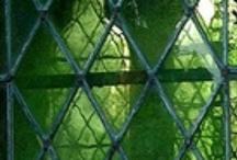 Groen / by eenentwee
