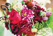 Wedding ideas bouquets, cakes, corsages and bouts. / by JoAnne Orton