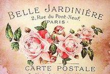 Antique - Vintage - Ephemera / #Vintage #Antique #Retro #PinUp #Ephemera #MagazineCover #Cards #Tags #Labels #Letters #Mannequin #Cupcake #Moulage #Pattern #Painting #Printable #Illustration #Watercolor #Collage #Background #Wallpaper #Notepaper #Freebie #Graphic #Láminas #Rose #Floral #Flower #FrenchEphemera #VintagePaper #Decoupage #Postcard #BirdCage #Portrait #Photography #Butterfly #FrenchPostcard #ShabbyChic #1920s #1930s #1940s #1950s #1960s #ATC #Paris #MusicSheet #Parisienne #Chic #DressForm #Bird #Botanical #Sepia / by Monica Osorio