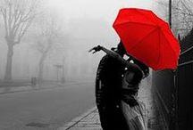 rain / by Renata Machtelinckx