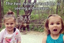 hilARious / by Hannah K