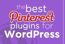 Pinterest Plugins for Wordpress / by Pinterest Mastery
