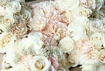Wedding / Ideas for Weddings, Wedding Set Ups, and Wedding Gifts! / by Parkers of Lexington