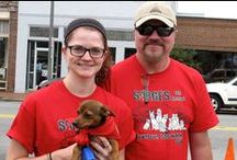 Downtown Dog Walk 2014 / Sarge's annual Downtown Dog Walk will be held August 2, starting at 10AM at the Courthouse in Waynesville.  This is our biggest fundraiser of the year, and certainly one of the most fun! / by Sarge's Animal Rescue Foundation
