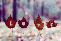 Seasons / by Lyubava Crochet