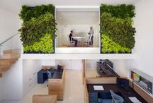 Green office inspiration / We want to provide you with some inspiring ideas to pimp your office in a nice work environment by making use of green walls or artificial grass.  / by Eco Outdoor Asia