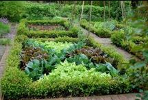 style of living--Potager / To Plants Garden Is to Believe in Tomorrow! / by Orn