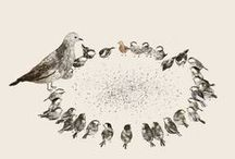 Illustration: Bird Brain! / by LUCY COLEMAN