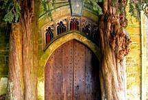 Doors & Windows Galore! / by Cynthia Berg