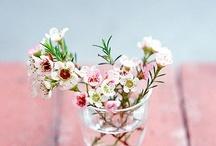 fleur / by Nochi Ueha
