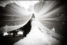 My Wedding / by Sharihan Amra
