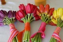 {I LOVE tulips!} / my favorite flower... / by Desserts Designed