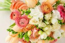 Wedding Ideas / by Cassidy Edwards