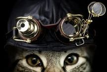 cogs and gears and marvelous machines / Steampunky stuff. / by Cat Rambo