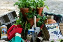 Gardening Tips & Tricks / by Pinetree Garden Seeds