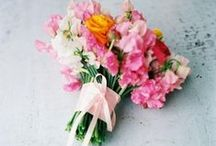 Blooms / Flowers for weddings and inspiration  / by Laura Moore