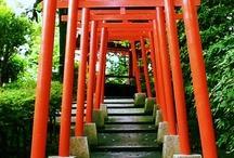 Study Abroad: Kanazawa University / by RevesCenter William&Mary