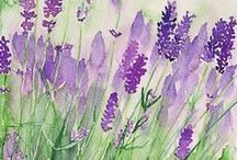 Painted Garden / by Ilona's Garden
