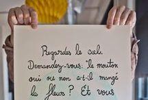 T H E _ L I T T L E  _ P R I N C E / by Christine Demarbre
