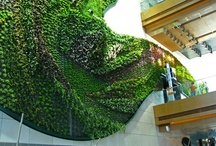 Vertical Gardens / Living walls and vertical gardens can make a statement. Here are some ideas of how they have been incorporated into various environments. / by Engledow Group