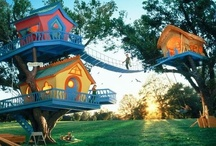 Cool Tree Houses / by Engledow Group