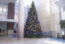 Christmas & Holiday Decor / by Engledow Group