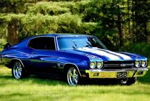 Muscle / Cars / by Kevin Love
