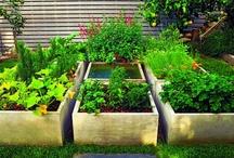 La main verte / gardening / by r&c a