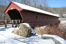 Bridges in the Finger Lakes / The Finger Lakes region of upstate New York is home to many fine bridges, both historic and modern. For more information about the Finger Lakes, visit: http://ilovethefingerlakes.com/ / by ILovetheFingerLakes