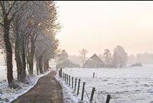 HeartWinterBeauty / Heart winter beauty frozen in time / by Ella Wild