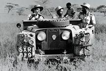 Safari Travel / by Shakari Connection
