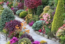 Gardens / by Troy Sheffield