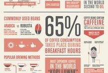 Info Graphics / by Katelyn Worum