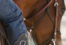 Horses / by GUYsilentrunner2013